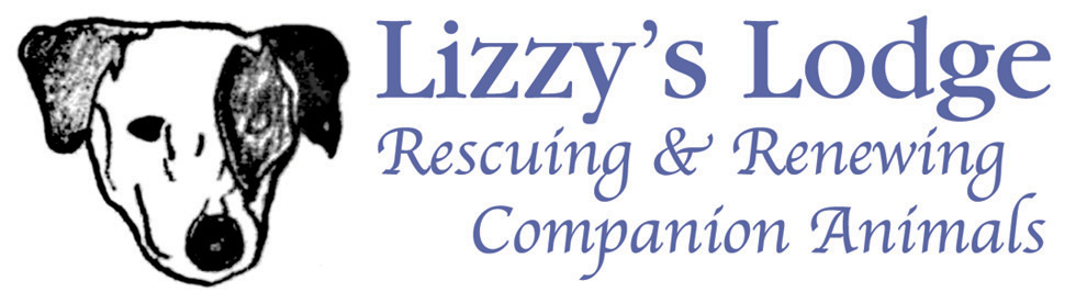 Lizzy's Lodge