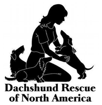 Dachshund Rescue Of North America
